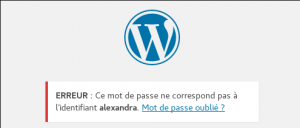 Wordpress - erreur login user